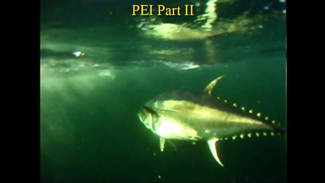 PEI Part II  TRT  22:00