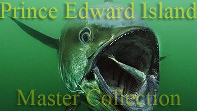 1000 Pound Bluefin/Prince Edward Island - Complete 6 Part Award Winning Series TRT  154:00