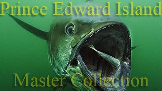 1000 Pound Bluefin/Prince Edward Island - Complete 6 Part Award Winning Series TRT  154:00