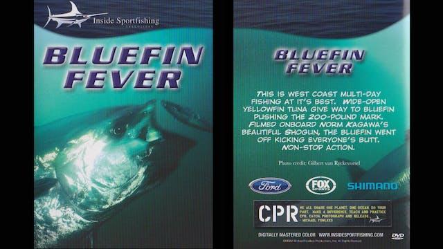 Bluefin Fever