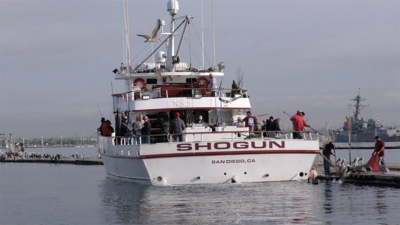 Punta Conoas/Shogun 8-Day Tuna & Yellowtail     TRT  48:00