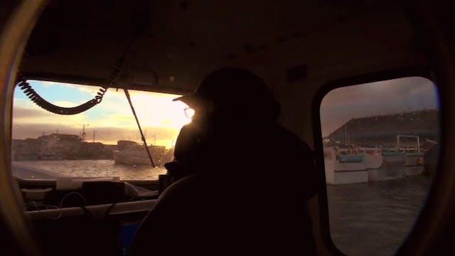Prince Edward Island 1000 Pound Bluef...