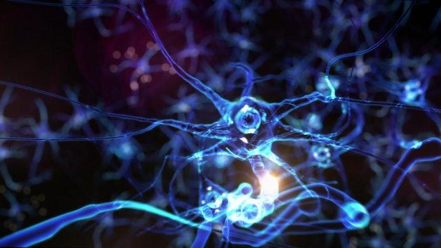 Secrets of the Brain S1 - Trailer