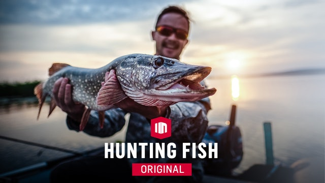 Hunting Fish