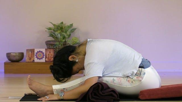Gentle Yoga with Rukmini Ando - Class 7