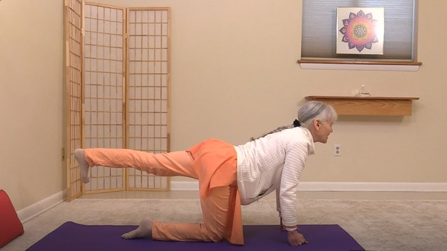 Hatha Yoga with Swami Vidyananda