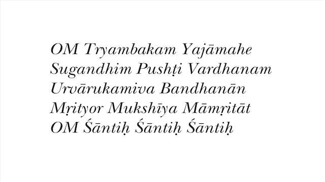 50-min. Meditation with Narada Williams (audio with chant sheet)