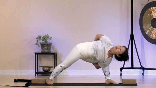 Hatha Yoga - Level 3 with Rukmini Ando - Class 5