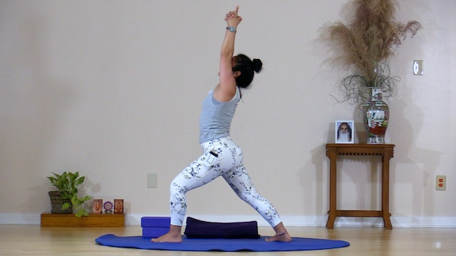 Hatha Yoga - Level 3 with Rukmini Ando - Class 10