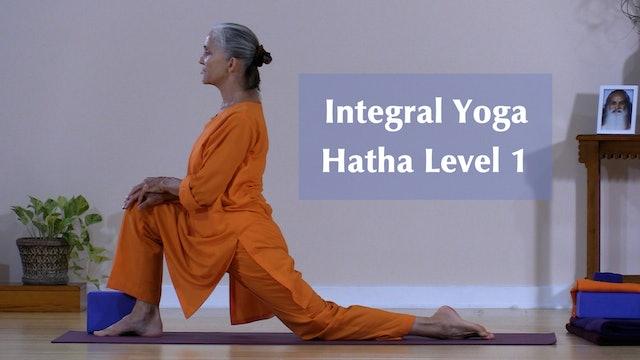 Hatha Yoga - Level 1 with Saci Murphy - Class 4