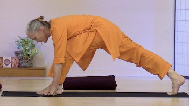 Hatha Yoga - Level 2-3 with Swami Arivananda - Class 8