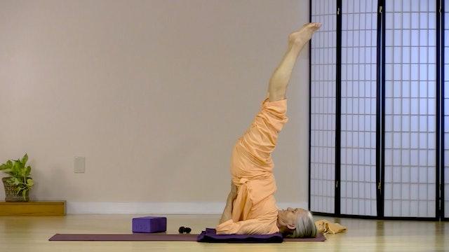 Hatha Yoga - Level 1 with Saci Murphy