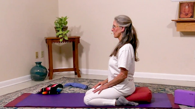 Free Your Joints - Part 1: Basics and Alignment with Dhivya Berthoud
