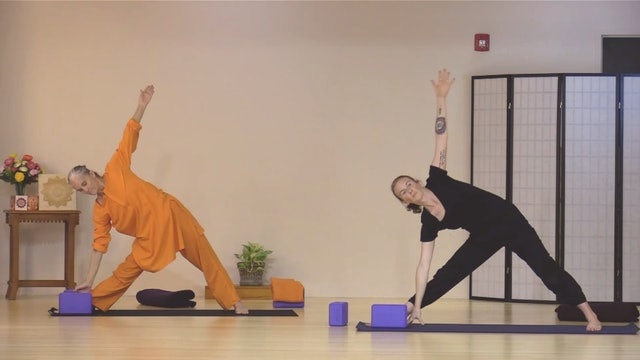Hatha Yoga - Level 2-3 with Swami Arivananda - Class 6