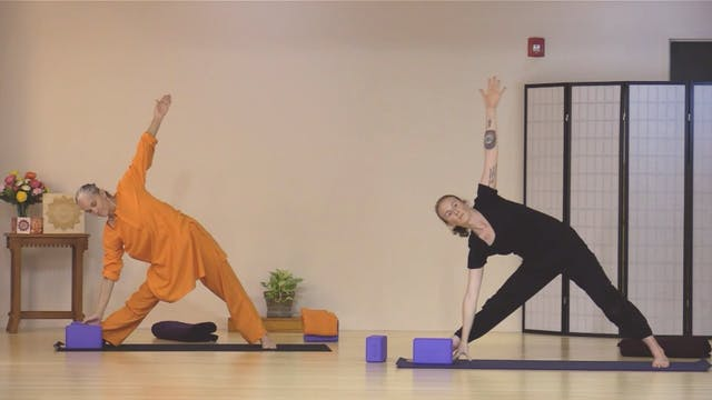 Hatha Yoga - Level 2-3 with Swami Ari...