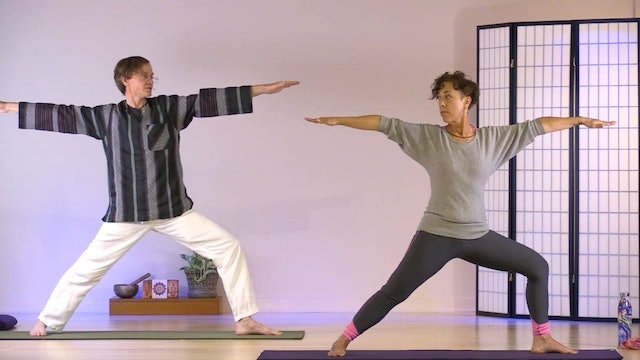 Hatha Yoga - Level 1 with Mitra Somerville - Class 2