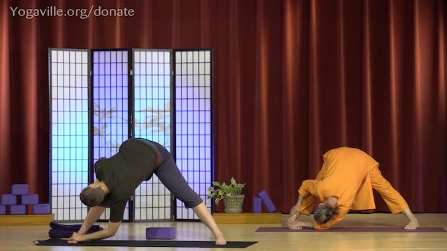 Hatha Yoga - Mixed Level with Swami Arivananda - Class 2