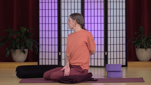 Hatha Yoga - Level 2 with Swami Asokananda - Class 2