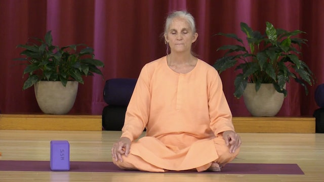 Hatha Yoga - Mixed Level with Swami Arivananda - Class 1