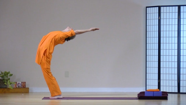 12 Sun Salutations with Swami Arivananda
