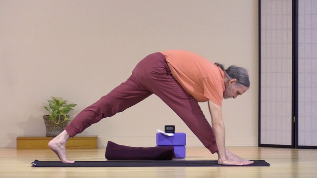 Hatha Yoga - Level 2 with Swami Asokananda - Class 3