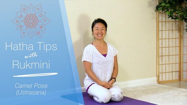 Hatha Yoga Tips: Camel Pose with Rukmini Ando