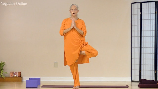Hatha Yoga - Level 1 with Swami Arivananda - Class 3