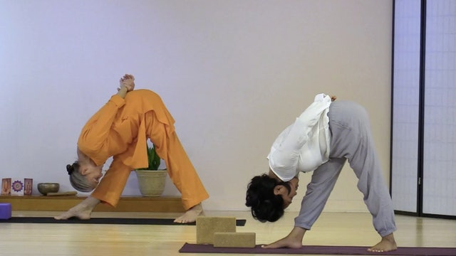 Hatha Yoga - Level 2-3 with Swami Arivananda - Class 4