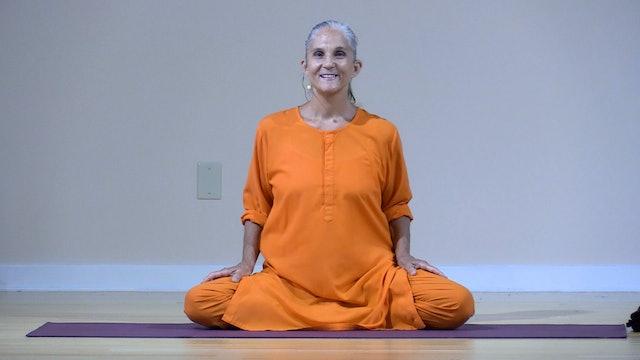 Hatha Yoga - Level 2-3 with Swami Arivananda - Class 12