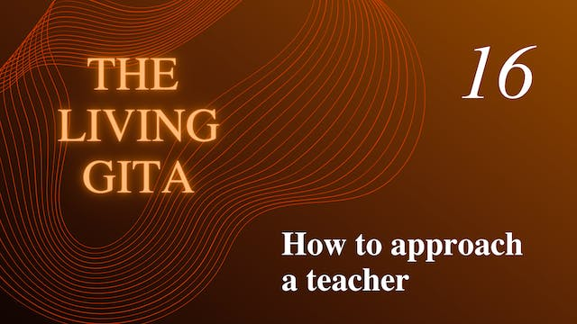 Part 16: How to Approach a Teacher