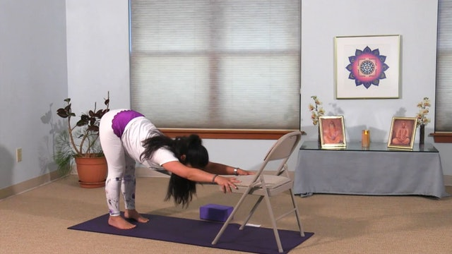 Hatha Yoga - Mixed Level Hip Openers with Rukmini Ando