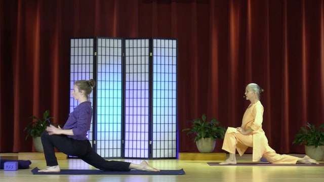 Hatha Yoga - Level 3 with Swami Arivananda