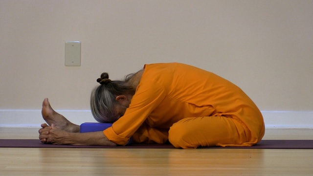 Hatha Yoga - Level 2-3 with Swami Arivananda - Class 11