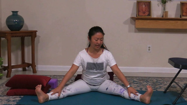 Hatha Yoga Tips: Wide Angled Forward Fold with Rukmini Ando