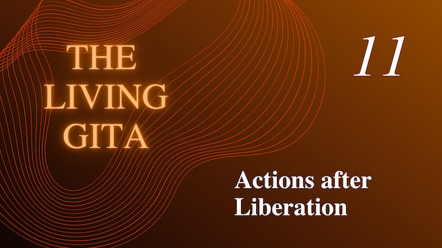 Part 11: Actions after Liberation