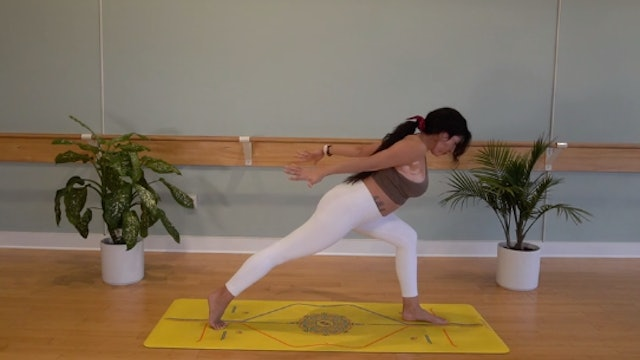Thoracic Mobility Vinyasa with Yvonne Rodriguez (Level 2)