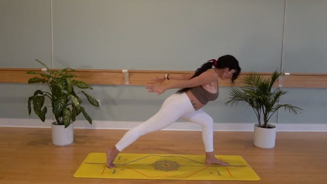 Thoracic Mobility Vinyasa with Yvonne...