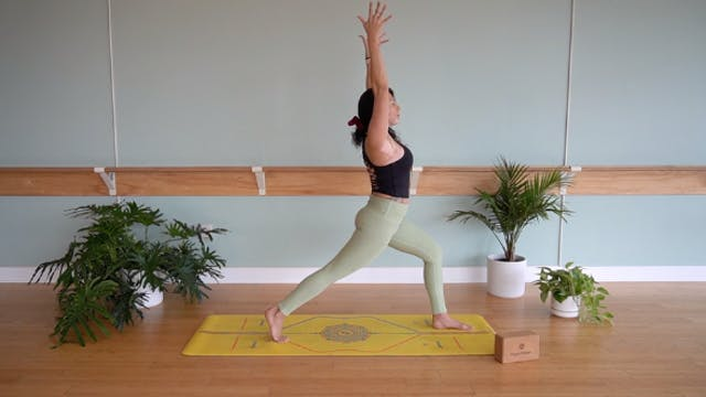 Vinyasa Foundations with Yvonne Rodri...