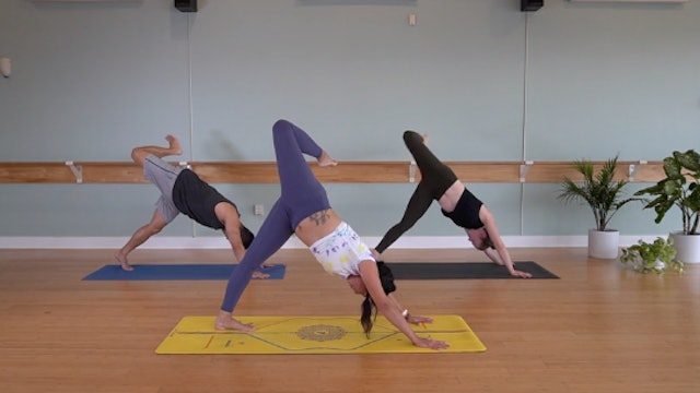 Bind Variations with Yvonne Rodriguez (Level 2)
