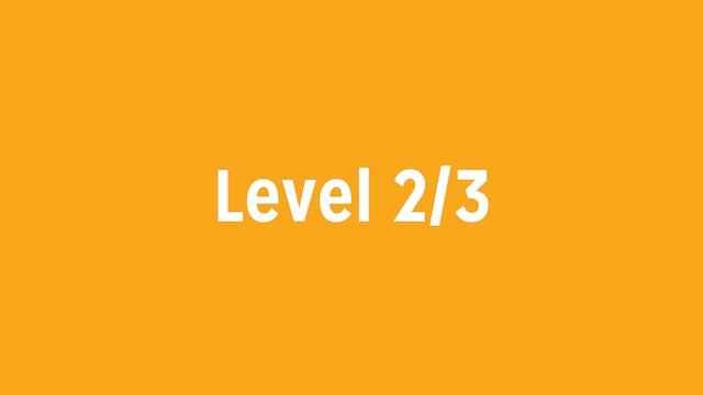 Level 2/3