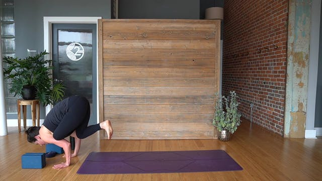 Binds and Arm Balances w: Erin Eoff (...