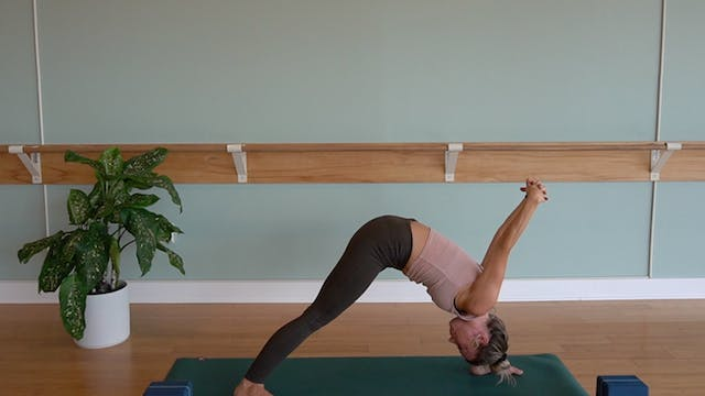 Arm Balancing and Binds with Erin Mor...