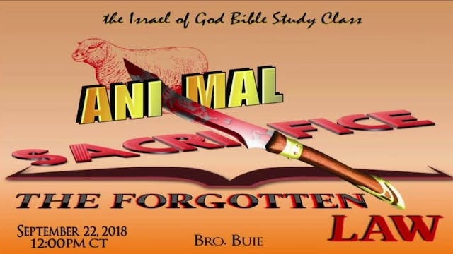 09222018 - Animal Sacrifice: The Forg...