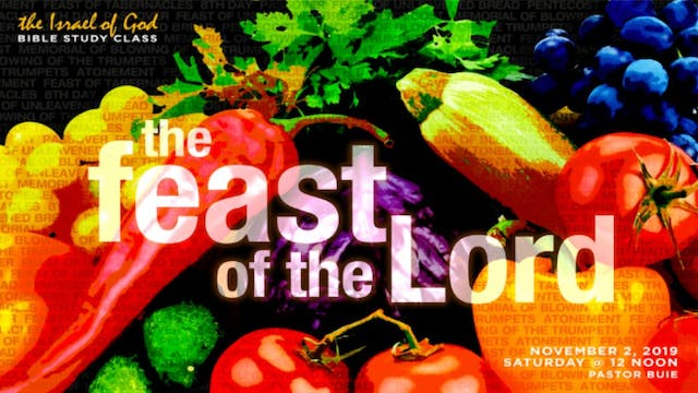 11022019 - The Feasts of the Lord