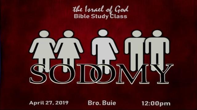 4272019 - Sodomy