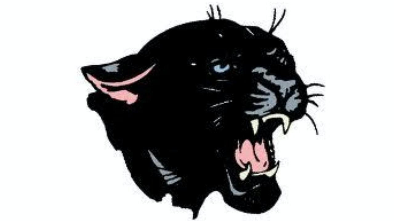Knightstown Panthers