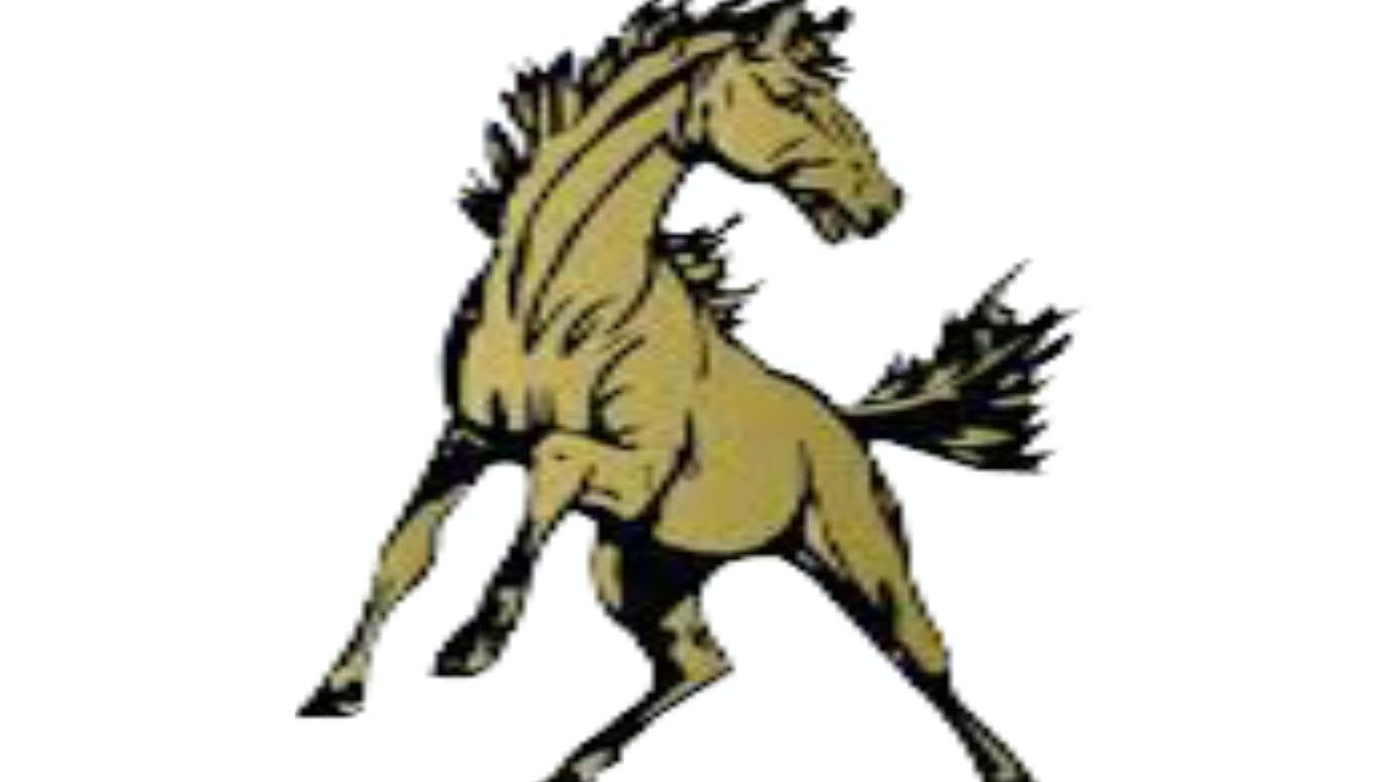 Daleville Broncos