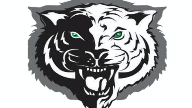 Triton Central Tigers