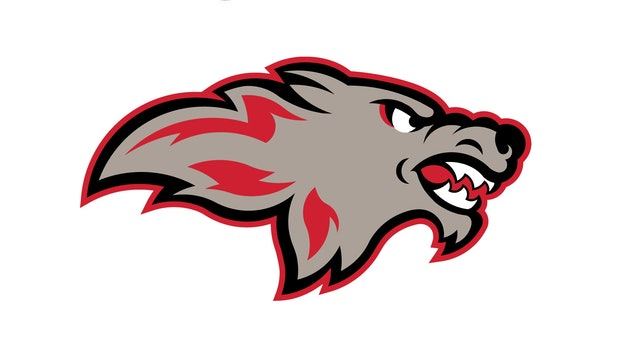 Cardinal Stritch Wolves