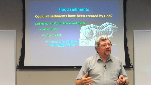 Geology: Sedimentology of the Flood
